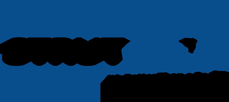 Strut Wipe